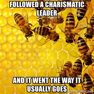 Honeybees - followed a charismatic leader and it went the way it usually goes