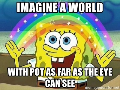 Imagination - Imagine A World With Pot As Far As The Eye Can See