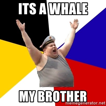 Patriot - Its a whale  my brother