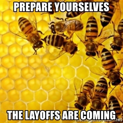 Honeybees - prepare yourselves the layoffs are coming