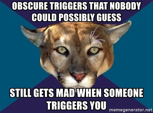 PTSD PUMA - Obscure triggers that nobody could possibly guess Still gets Mad when someone triggers you