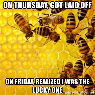Honeybees - on thursday, got laid off on friday, realized i was the lucky one