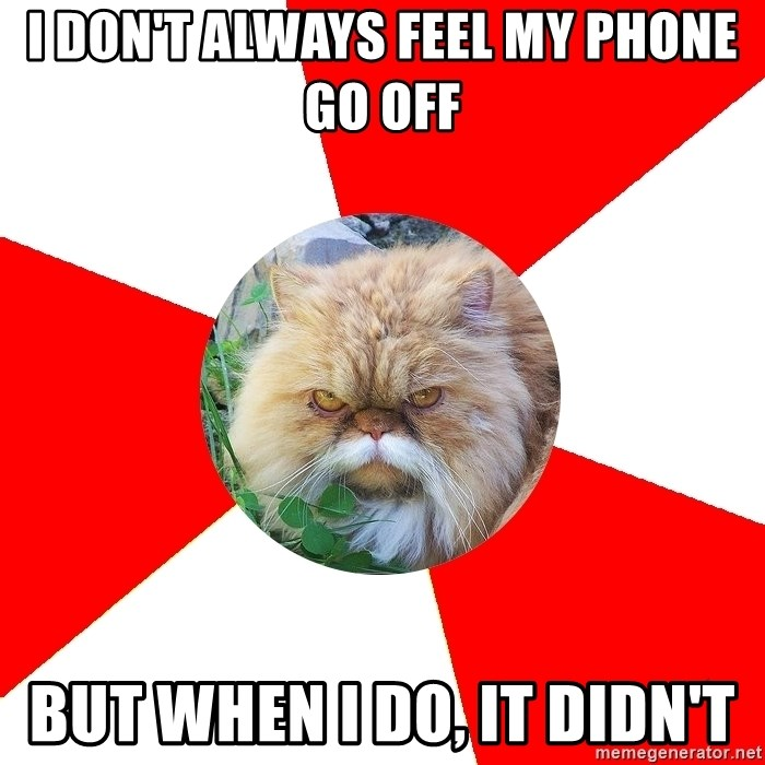 Diabetic Cat - I Don't always feel my phone go off But when I do, it didn't