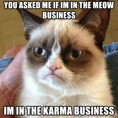 Grumpy Cat  - you asked me if im in the meow business im in the karma business