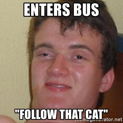 """really high guy - enters bus """"follow that cat"""""""