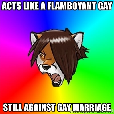 Advice Furry - acts like a flamboyant gay Still against gay marriage