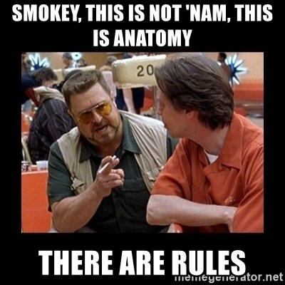 walter sobchak - Smokey, this is not 'nam, this is anatomy there are rules
