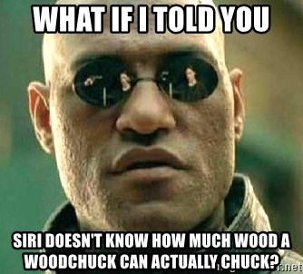 What if I told you / Matrix Morpheus - What if I told you Siri doesn't know how much wood a woodchuck can actually chuck?