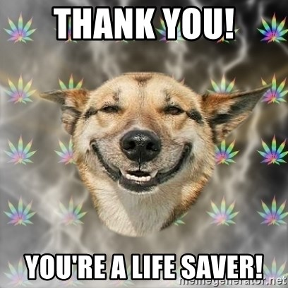 Stoner Dog - THANK YOU!  you're a life saver!