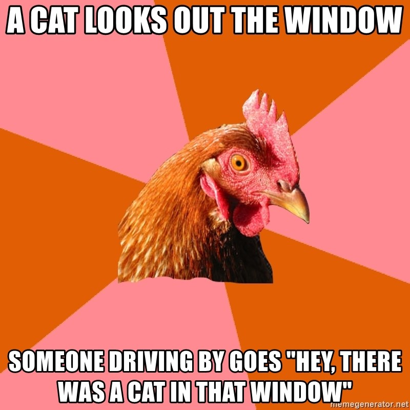 """Anti Joke Chicken - a cat looks out the window someone driving by goes """"hey, there was a cat in that window"""""""