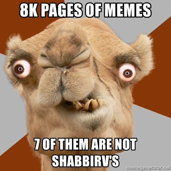 Crazy Camel lol - 8k pages of memes 7 of them are not shabbirv's