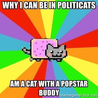 nyan nyan nyan cat - why i can be in politicats am a cat with a popstar buddy
