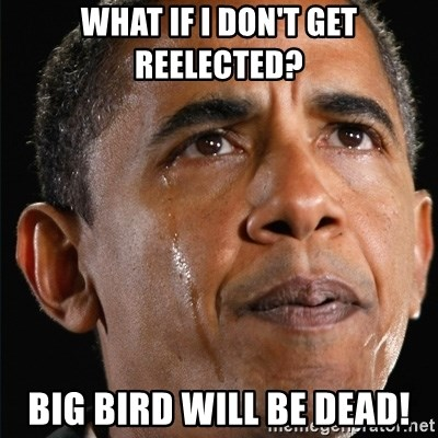 What If I Don T Get Reelected Big Bird Will Be Dead