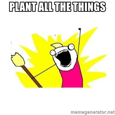 clean all the things blank template - Plant all the things