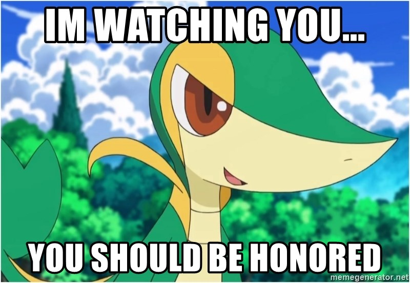 Snivy - Im watching you... you should be honored