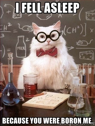 Chemistry Cat - I fell asleep because you were Boron me.