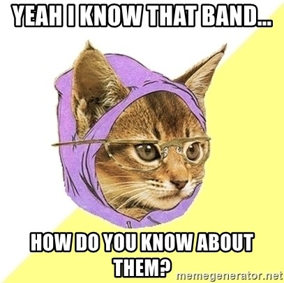 Hipster Kitty - yeah I know that band... how do you know about them?