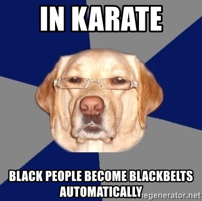 Racist Dawg - in karate  black people become blackbelts automatically
