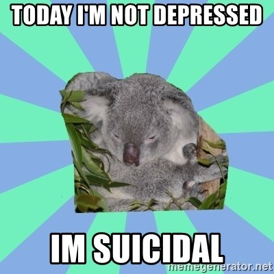 Clinically Depressed Koala - Today I'm Not depressed  Im suicidal