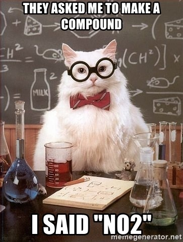 "Chemist cat - They asked me to make a compound i said ""no2"""