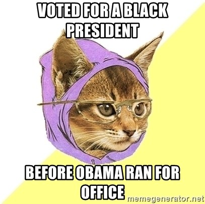 Hipster Kitty - Voted for a black president Before obama ran for office
