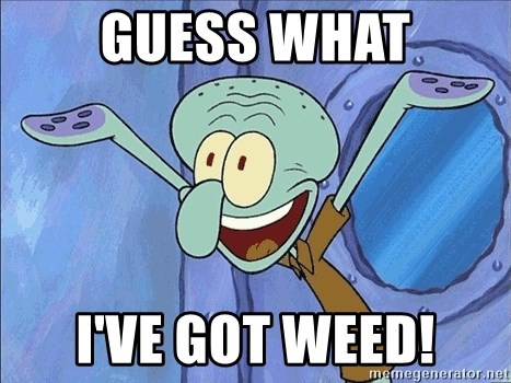 Guess What Squidward - guess what i've got weed!