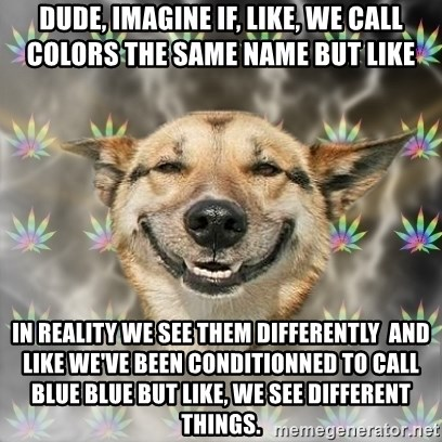 Stoner Dog - dude, imagine if, like, we call colors the same name but like in reality we see them differently  and like we've been conditionned to call blue blue but like, we see different things.
