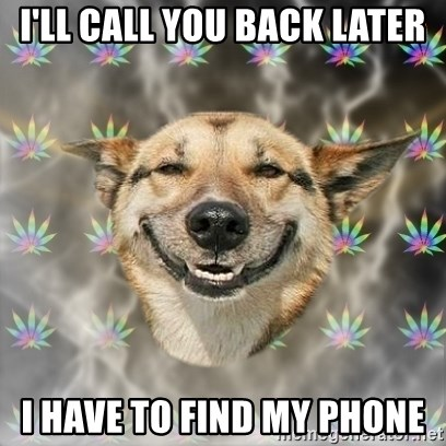 Stoner Dog - i'll call you back later i have to find my phone