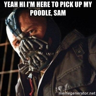 Only then you have my permission to die - Yeah hi i'm here to pick up my poodle, sam