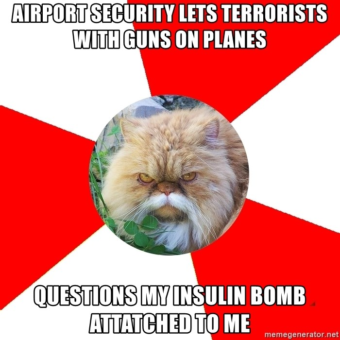 Diabetic Cat - Airport security lets terrorists with guns on planes Questions my insulin bomb attatched to me