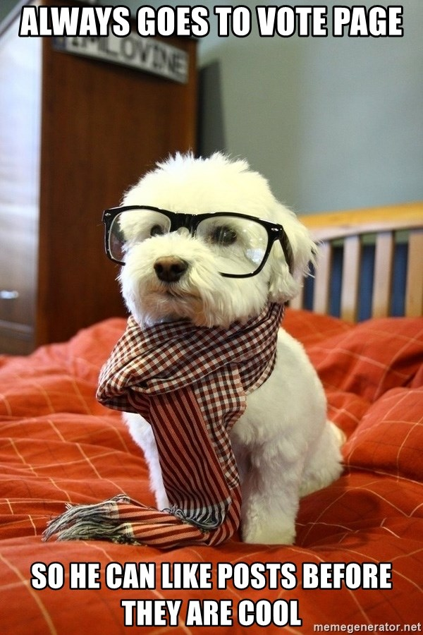hipster dog - Always goes to vote page so he can like posts before they are cool