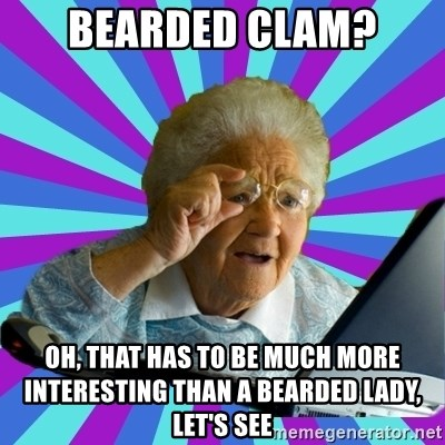 old lady - bearded clam? oh, that has to be much more interesting than a bearded lady, let's see
