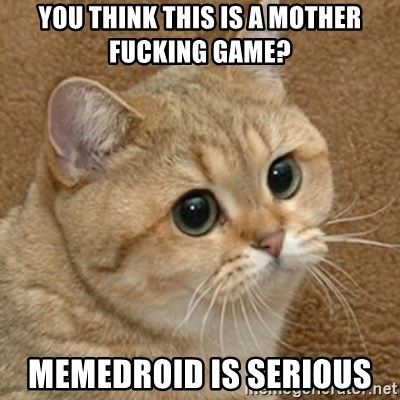motherfucking game cat - YOU THINK THIS IS a mother fucking game? memedroid is serious