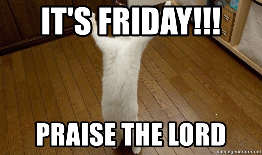 praise the lord cat - iT'S FRIDAY!!! PRAISE THE LORD