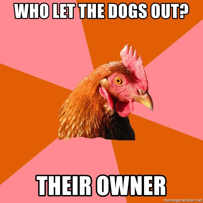 Anti Joke Chicken - Who Let the Dogs Out? Their Owner