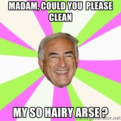 Dsk Generator - MADAM, COULD YOU  PLEASE CLEAN MY SO HAIRY ARSE ?