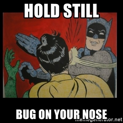 Batman Slappp - hold still bug on your nose