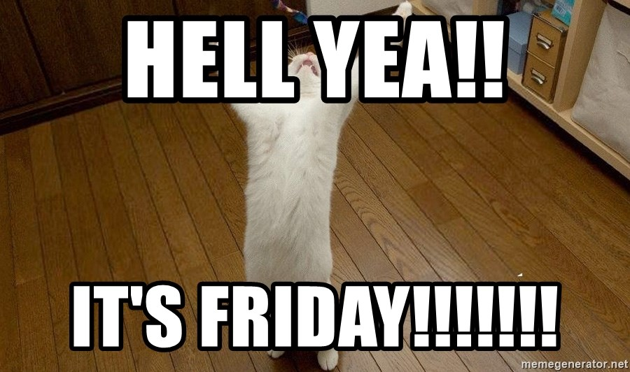 praise the lord cat - hell yea!! it's friday!!!!!!!