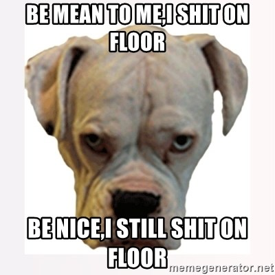 stahp guise - be mean to me,i shit on floor be nice,i still shit on floor