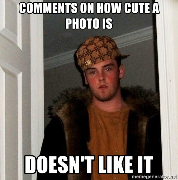 Scumbag Steve - comments on how cute a photo is doesn't like it