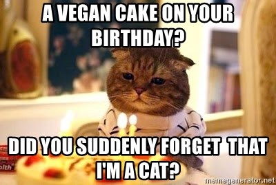 Birthday Cat - a VEGAN CAKE ON YOUR BIRTHDAY? DID YOU SUDDENLY FORGET  THAT i'M A CAT?