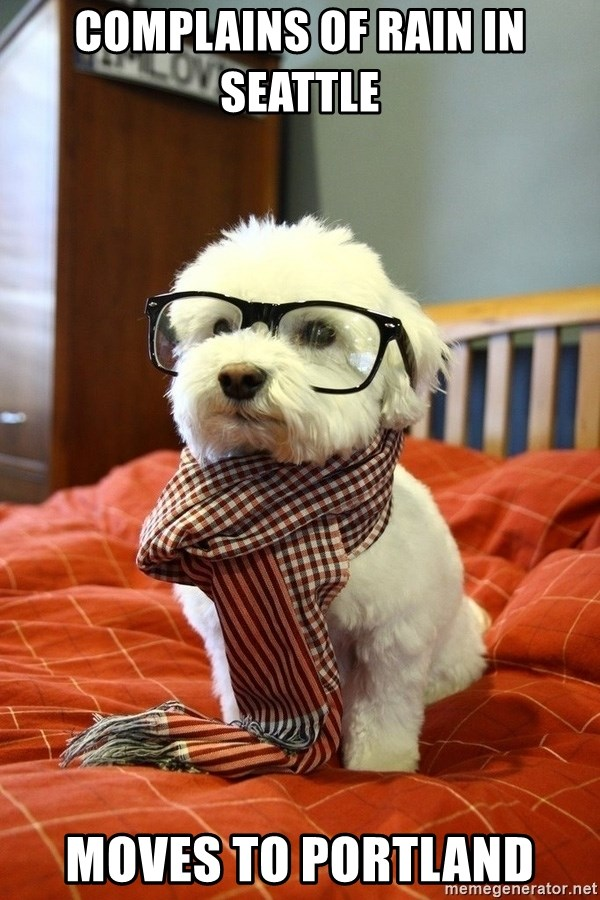 hipster dog - complains of rain in seattle  moves to portland