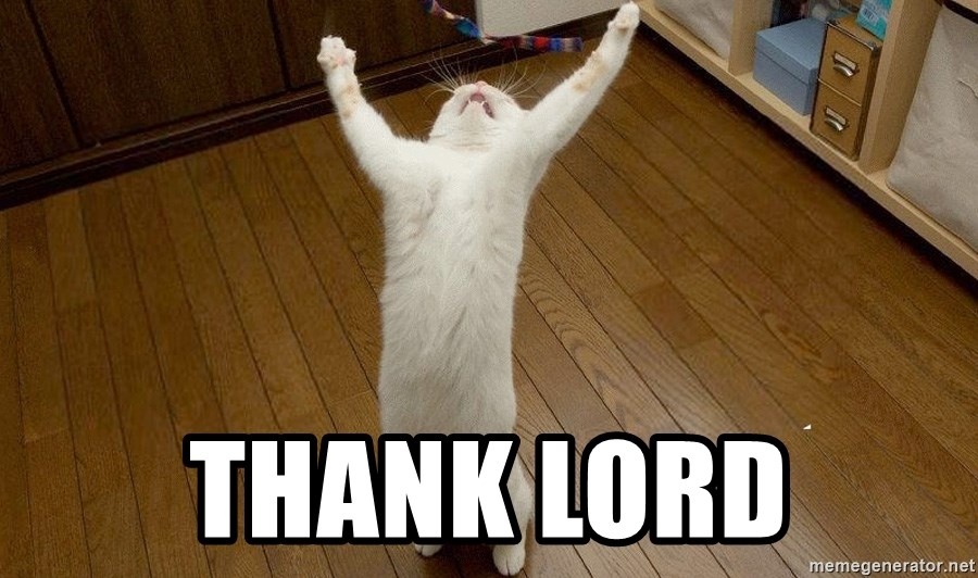 praise the lord cat - thank lord