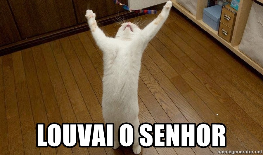 praise the lord cat - Louvai o senhor