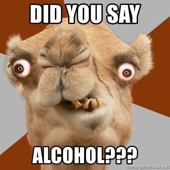 Crazy Camel lol - DID YOU SAY  ALCOHOL???