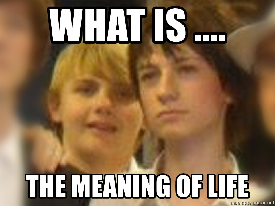 Thoughtful Child - what is .... the meaning of life