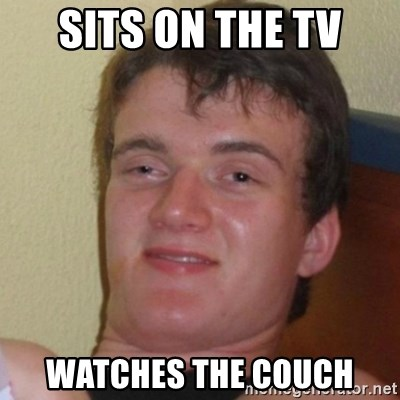 Really Stoned Guy - Sits on the tv watches the couch
