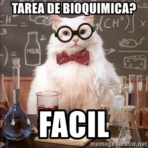 Science Cat - TAREA DE BIOQUIMICA? facil