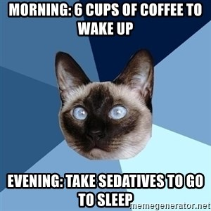Chronic Illness Cat - Morning: 6 cups of coffee to wake up Evening: Take Sedatives to go to sleep