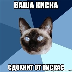 Chronic Illness Cat - Ваша киска сдохнит от вискас